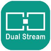 005-Dual-Stream (1)